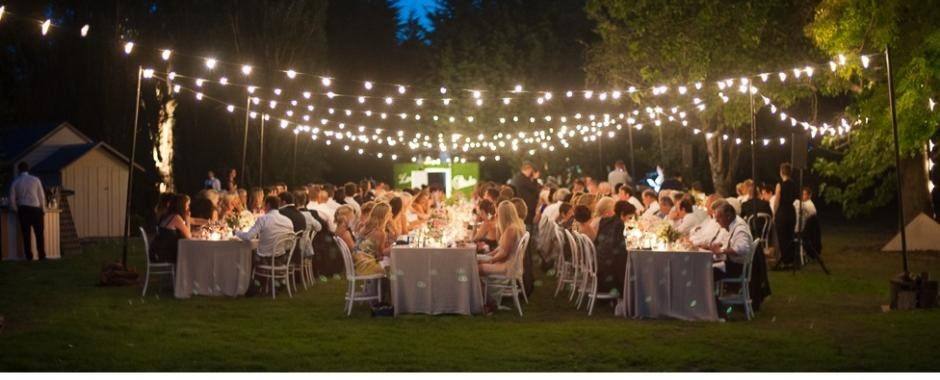 Garden rated festoon party lights
