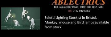 Seletti, in stock, on display, bird, monky, geko, lizzard, mice, banana, Polly Parrot