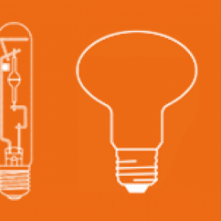 Find a light bulb online browse by the shape or size of the light bulb