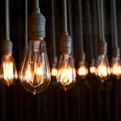 led squirrel cage light bulb