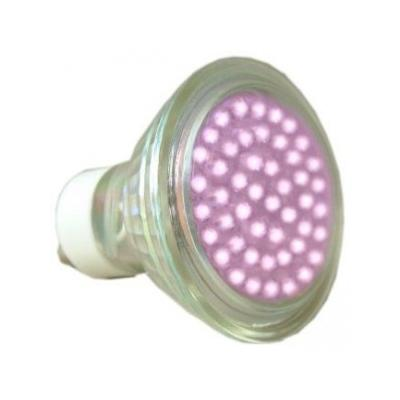 Pink LED GU10 lamp 2 watts | Electricsandlighting.co.uk